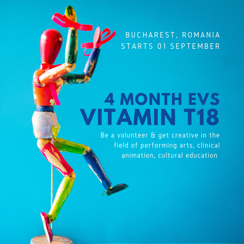 EVS: Call for Vitamin T18 – 4 month EVS project in Romania